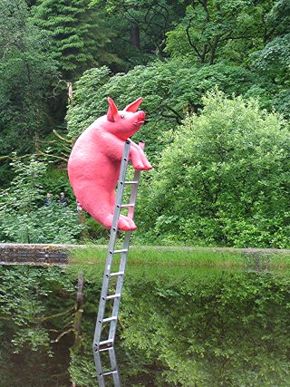 If Pigs Could Fly They Wouldn't Need Ladders.